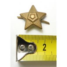 odznak hvězda mořená